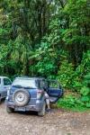 20160419-Costa-Rica-Monteverde-08.jpg