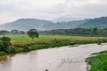 20160516-Costa-Rica-Nosara-to-Manuel-Antonio-31.jpg