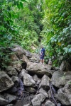 20160519-Costa-Rica-Corcovado-58.jpg